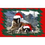 saint bernard avec bonnets et fond rouge vert.png