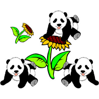 Adorable Sunflower Panda Bears