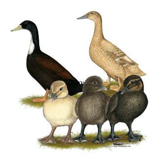 Golden Layer Duck Family