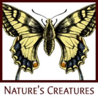 Nature's Creatures