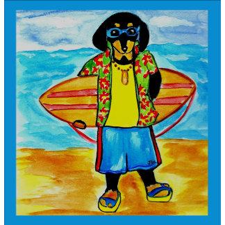 Surfer Joe
