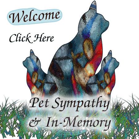 Pet Sympathy & In-Memory