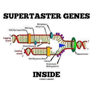 Supertaster Genes Inside (DNA Replication)