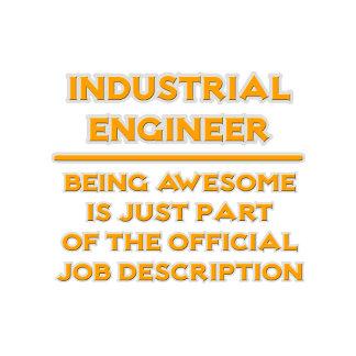 Industrial Engineer ..  Job Description
