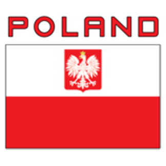 Polish Falcon Flag With Poland