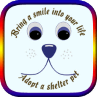 Bring a Smile Into Your Life