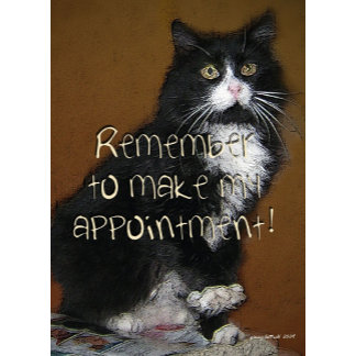 Appointment Reminders