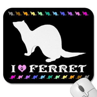 Ferret (17) white