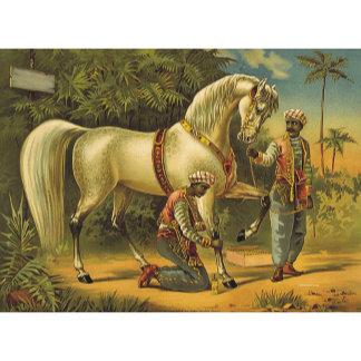 Horse Royalty