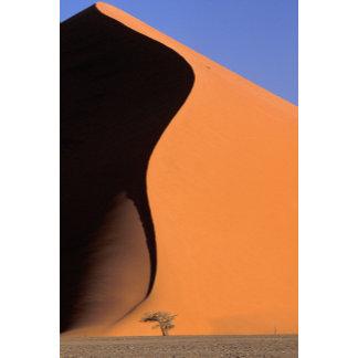 Africa, Namibia, Evening light on dunes,