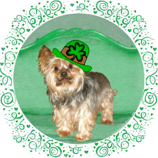 ST PATRICK YORKIES - 8 Different Designs