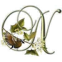 Songbird Initials