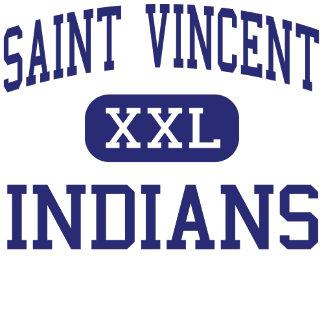 Saint Vincent High School