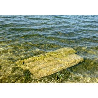 Concrete slab in pond