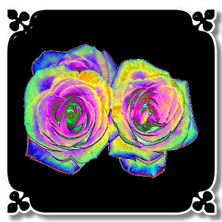 COLORED FOIL ROSES