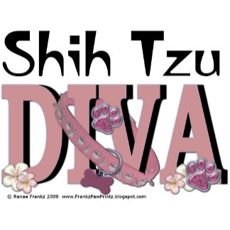 Shih Tzu DIVA