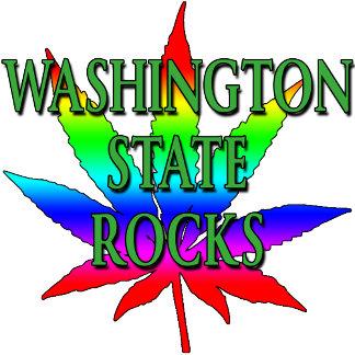 WASHINGTON STATE: LEGALIZED POT, GAY MARRIAGE