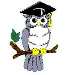 owl b.gif