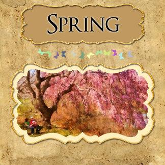 Season - Spring