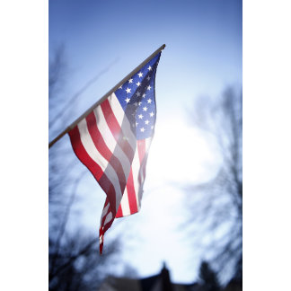 "American flag w/sun-grass poster print"""