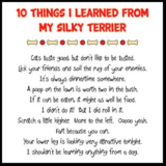 10 Things I Learned From My Silky Terrier Joke