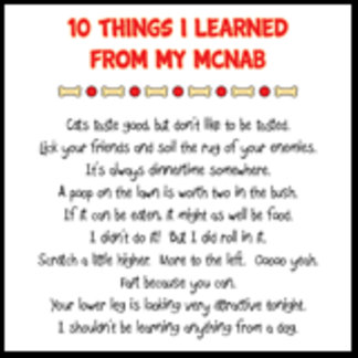 10 Things I Learned From My McNab Joke