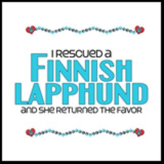 I Rescued a Finnish Lapphund (Female Dog)