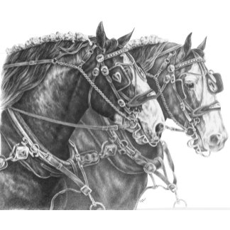 Horse Note Cards & Greeting Cards