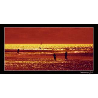 Sunset / Sunrise scenic landscape