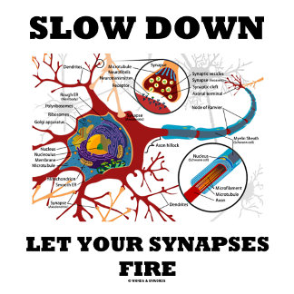 Slow Down Let Your Synapses Fire Neuron / Synapse