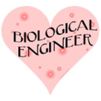 Biological Engineering Heart