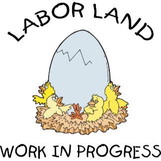 Labor Land Work In Progress Maternity T-Shirt