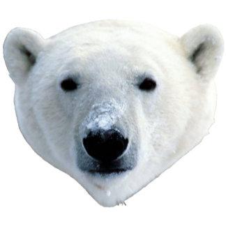 Polar Bear Apparel and More!