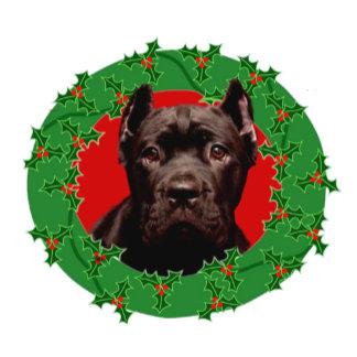 Christmas Cane Cosrso