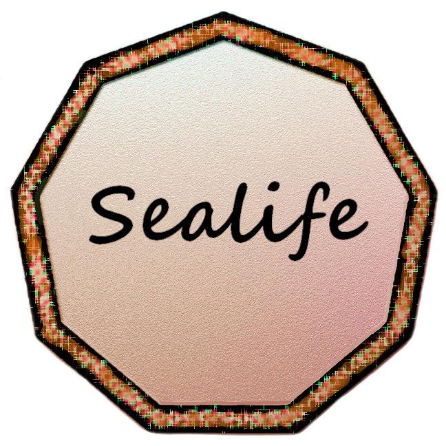 Spectacular Sealife