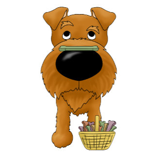 Irish Terrier - Big Nose Easter
