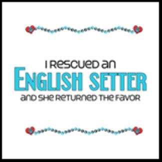 I Rescued an English Setter (Female Dog)