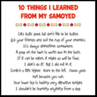 10 Things I Learned From My Samoyed Joke