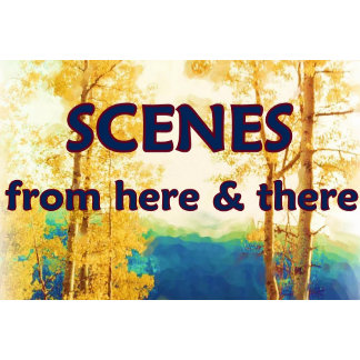 Scenes from here and there