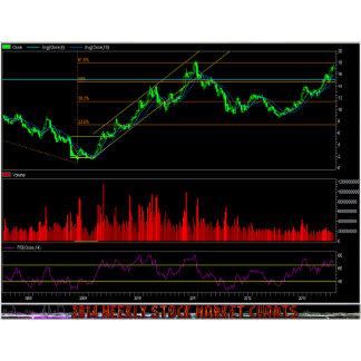 Buisness:The Stock Exchange