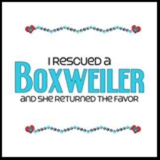 I Rescued a Boxweiler (Female Dog)