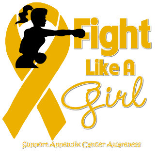 Appendix Cancer Fight Like A Girl Knock Out