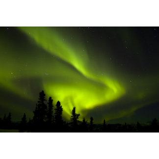 USA, Alaska, Chena Hot Springs. Aurora Borealis
