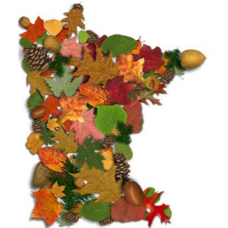 Autumn in Minnesota
