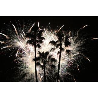 fireworks in palm trees.jpg