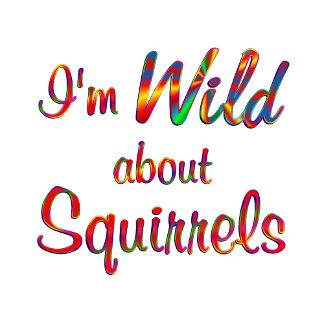 Wild About Squirrels
