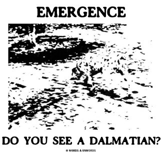 Emergence Do You See A Dalmatian?