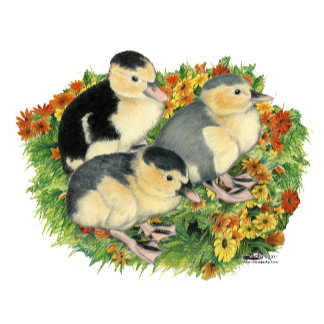Flower Garden Ducklings