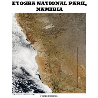 Etosha National Park, Nambia (Picture Earth)