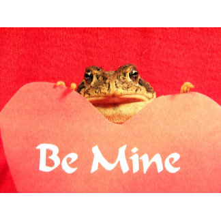 Be Mine Frog close up